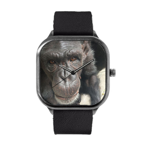 Chimpanzee Jessie Watch