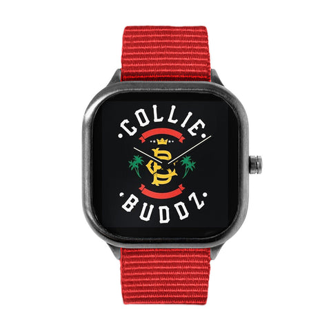 Collie Buddz Watch