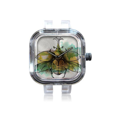 Coleoptera Watch