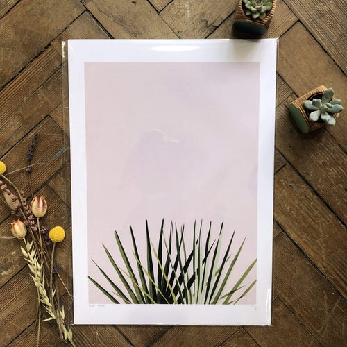 Do It Later Illustration Prints A3 (29.7 x 42cm) Pink Palm Print (various sizes)