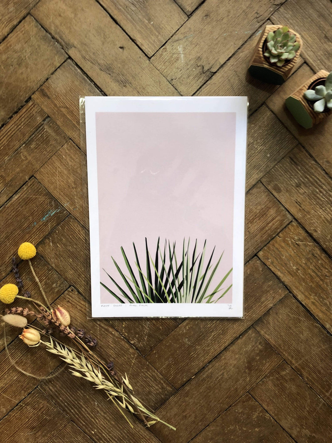 Do It Later Illustration Prints A4  (21 x 29.7cm) Pink Palm Print (various sizes)