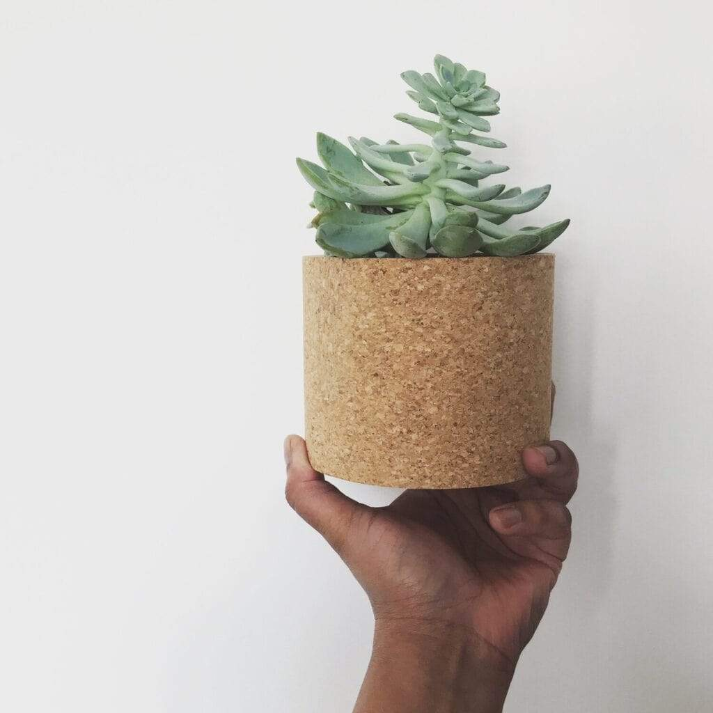 Mind The Cork Cork Planter ECHO - Cork planter