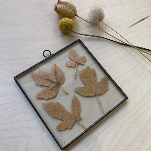 Paly Glass b Pressed Flower Frames - square