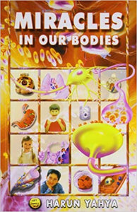 Miracle in Our Bodies - The Islamic Kid Store