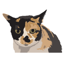 Load image into Gallery viewer, Cat Digital Art