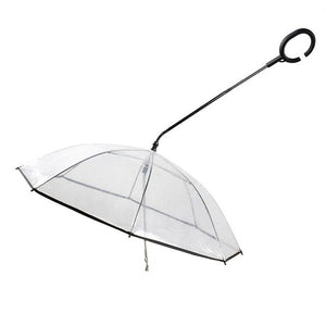 Transparent Pet Umbrella Leash