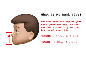 Discounted Sewn Mask (Aesthetic flaws, Various prints, Cotton Lining)