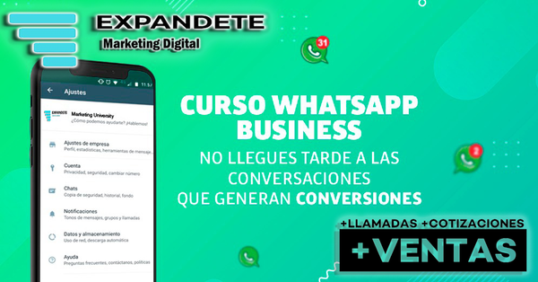 Curso Intensivo de Whatsapp Business