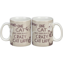 Load image into Gallery viewer, One Cat Away From Being A Crazy Cat Lady - Mug