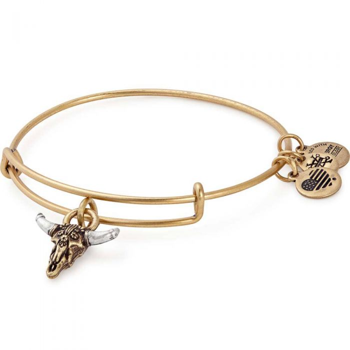 Alex and Ani Spirited Skull Charm Bangle