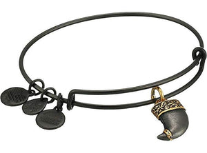Alex and Ani Tiger's Claw Two Tone Charm Bangle Matte Midnight Silver