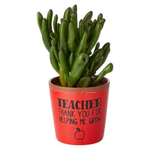 Load image into Gallery viewer, Teacher Grow Planter