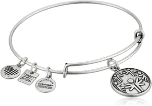 Alex and Ani Power of Unity Charm Bangle