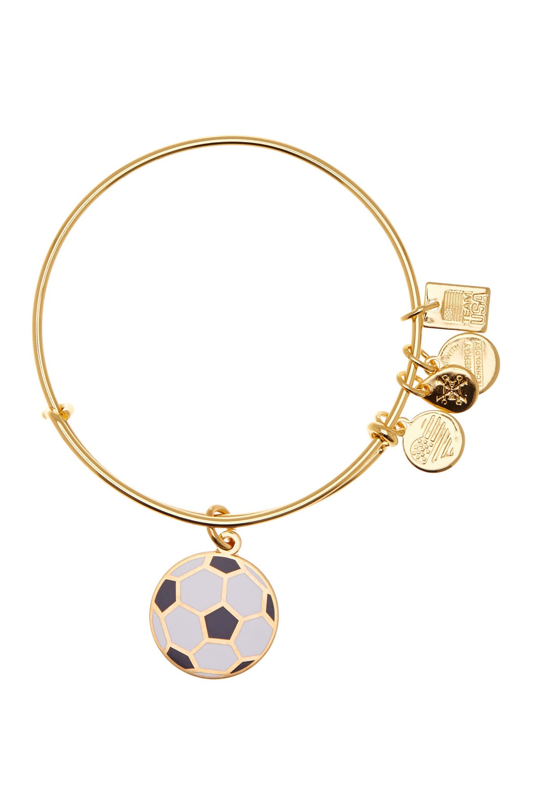 Alex and Ani Team USA Soccer Charm Bangle