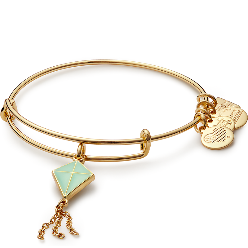 Alex and Ani Inspiration in Flight Charm Bangle