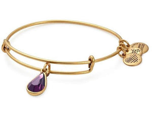 Alex and Ani - February Amethyst Birthstone Teardrop Charm Bangle With Swarovski® Crystals Rafaelian Gold