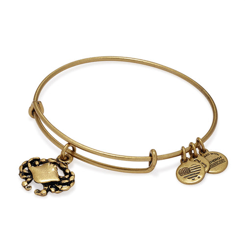 Alex and Ani Crab Charm Bangle Gold