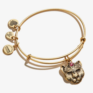 Alex and Ani Wild Heart Charm Bangle