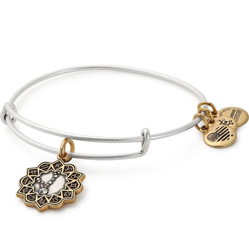 Alex and Ani Pisces Two Tone Charm Bangle