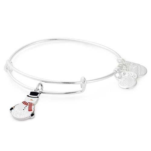 Alex and Ani Just Chill Charm Bangle