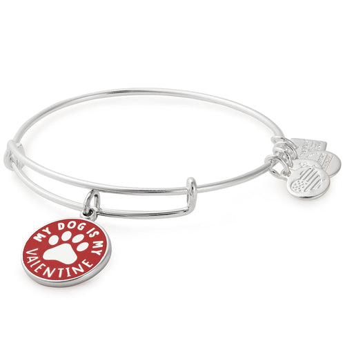 Alex and Ani My Dog is My Valentine Charm Bangle