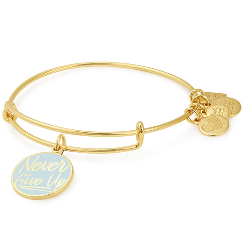 Alex and Ani Never Give Up Charm Bangle