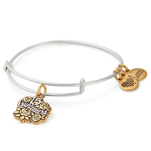 Alex and Ani Quinceanera Two Tone Charm Bangle