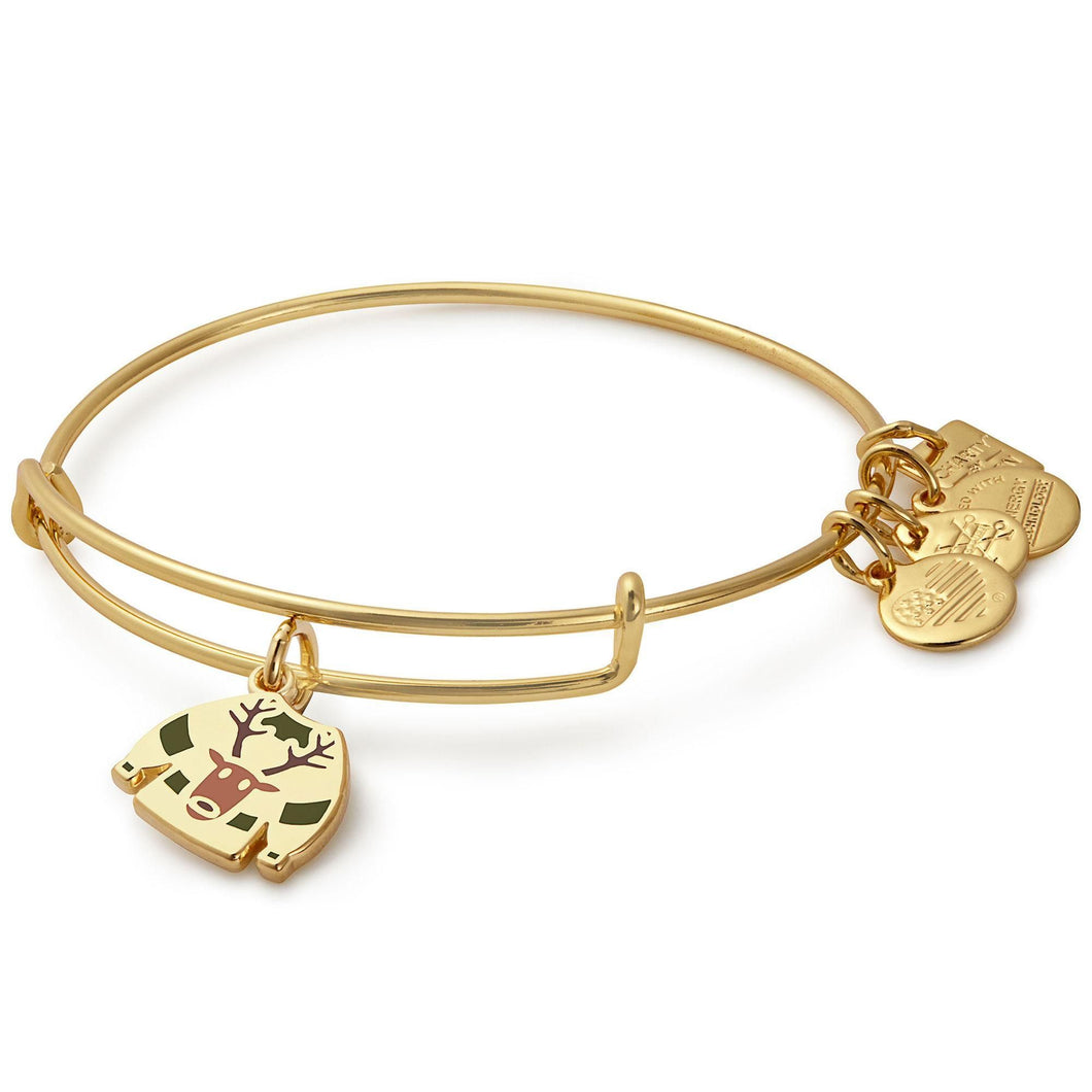 Alex and Ani Ugly Sweater Charm Bangle