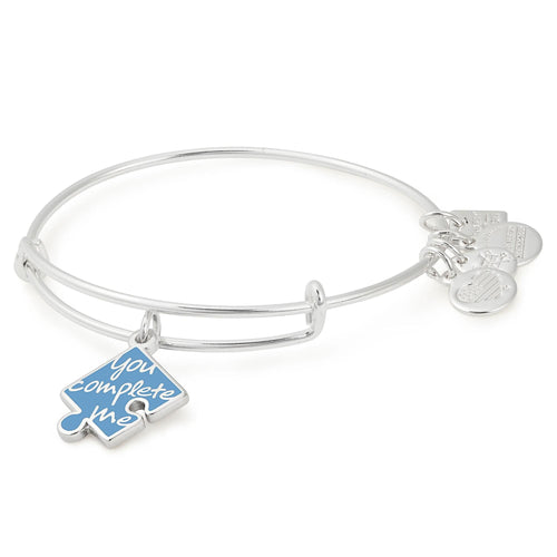 Alex and Ani You Complete Me Charm Bangle