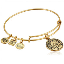 Load image into Gallery viewer, Alex and Ani Power of Unity Charm Bangle