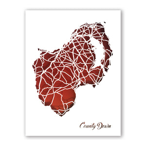 County DOWN - Papercut map - Designed Imagined Made in Ireland