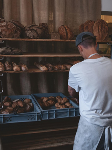 Albatross // Artisanal Bread & Pastries