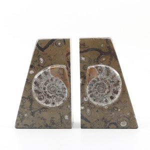 Ammonite Stone Bookends