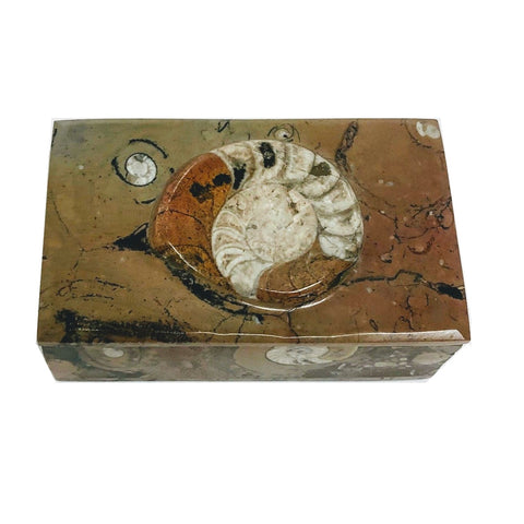 Ammonite Stone Rectangle Box