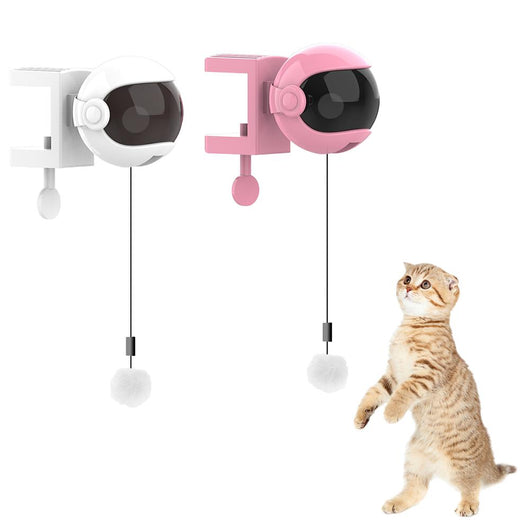 Automatic Lifting Ball Pet Toys