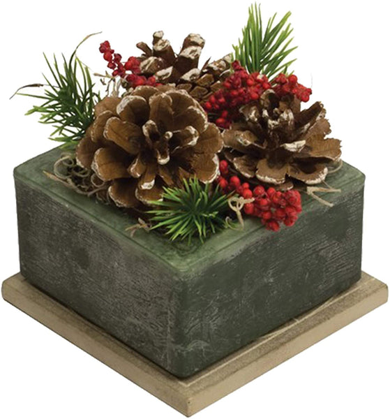 "Fragranced Home Decor Frosted Pine Cone Wax Geo 6"" Squared"