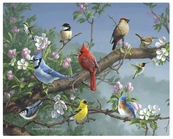 Magic Slice Gourmet Cutting Board - Songbirds in Apple Blossoms
