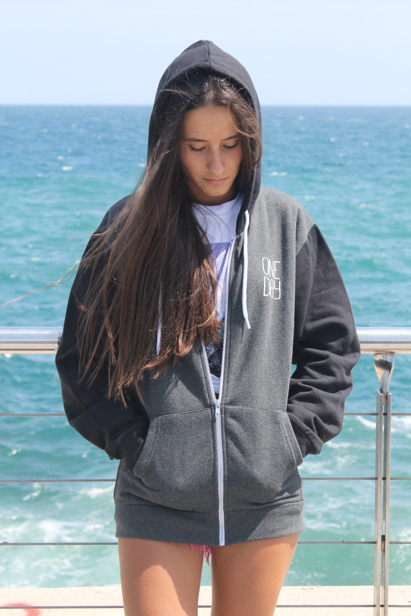 Santa Monica two-color Hoody