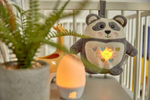 Load image into Gallery viewer, pip the panda night light sensor