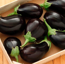 Load image into Gallery viewer, Eggplant - Satin Beauty