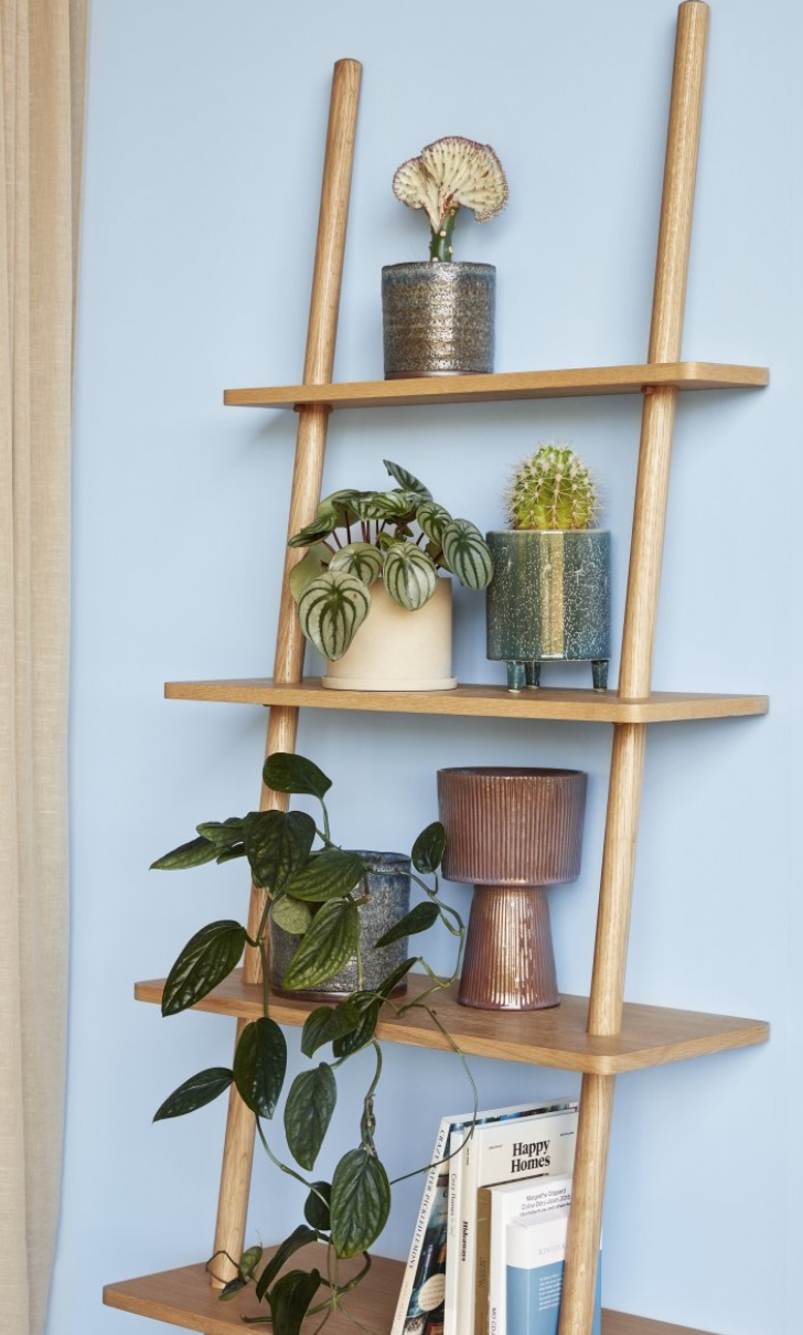 Oak Leaning Shelf Ladder