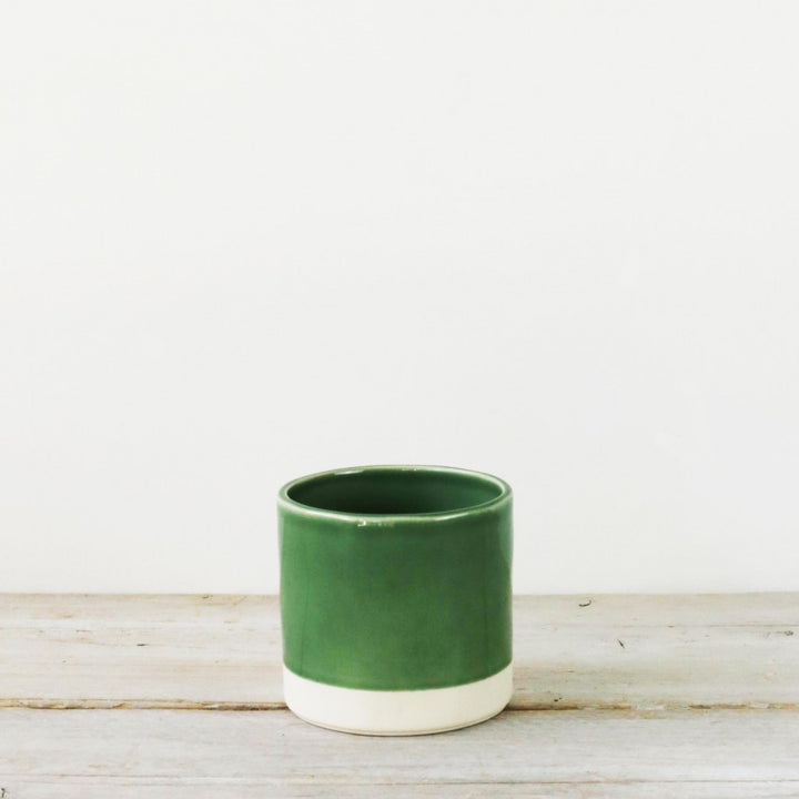 Parrot Green Pot Small