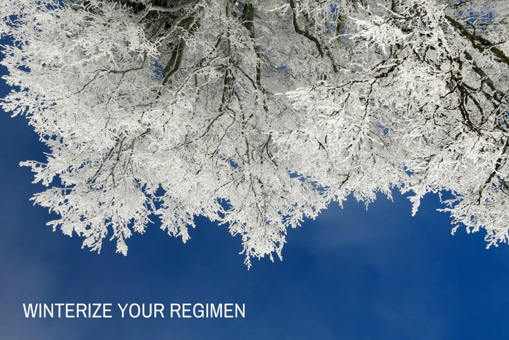 WINTERIZE YOUR REGIMEN