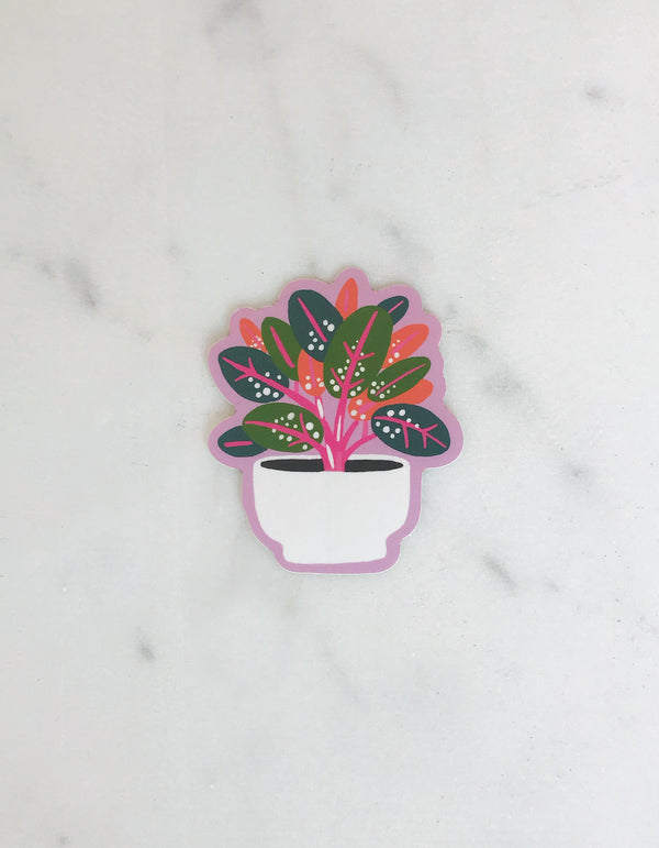 Idlewild Rubber Plant Die Cut Sticker