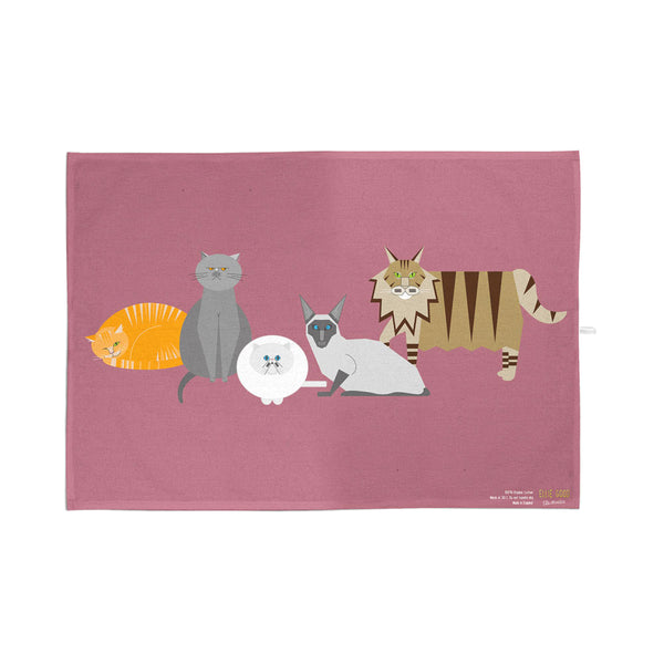 Cat Characters Gift Box