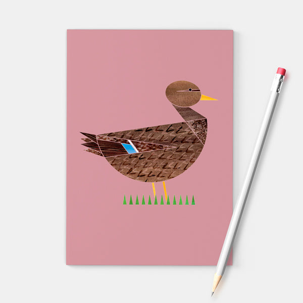 Set of three Dabbling Ducks notebooks