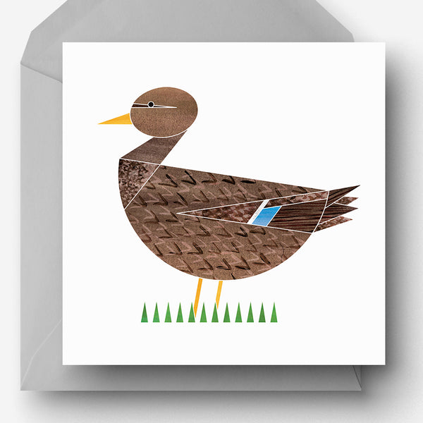 Pack of 5 Dabbling Duck Greetings Cards