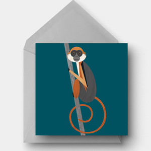 Red Colobus monkey charity card
