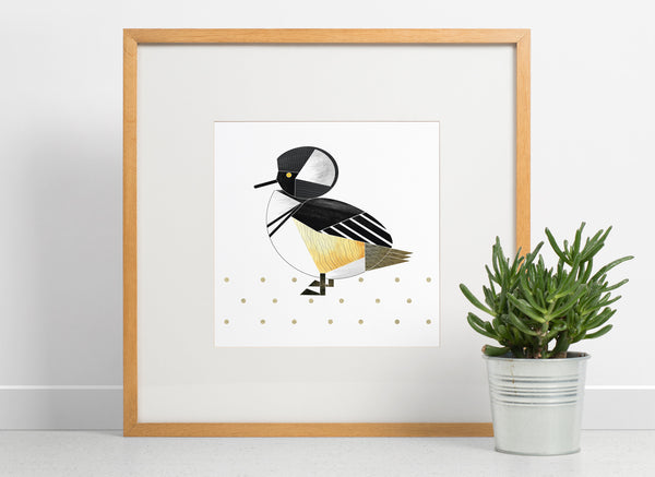 Hooded Merganser duck giclee print (unframed)