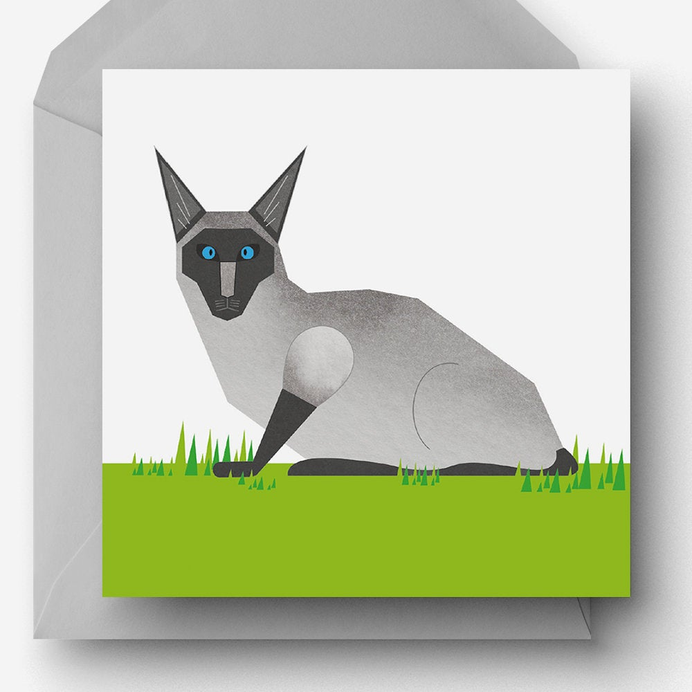Slightly shocked Siamese Cat charity card